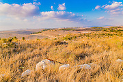 Neot Kedumim, the Biblical Landscape Reserve in Israel is a Biblical garden and nature preserve located near Modi'in