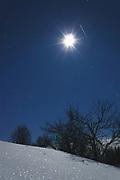 Moonlight, shooting star and leafless apple trees on cold and snowy winter night, Gauja National Park (Gaujas Nacionālais parks), Latvia Ⓒ Davis Ulands | davisulands.com