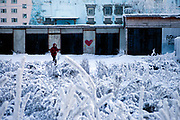 Street scene with snow covered trees in the city of Yakutsk. Yakutsk (Russian: Яку́тск) is a city in the Russian Far East, located about 4° (450 kilometres) south of the Arctic Circle. It is the capital of the Sakha (Yakutia) Republic in Russia with a major port on the Lena River. The city has a population of 264.000 (2009). Yakutsk is one of the coldest cities on Earth. The average monthly winter temperature in January is around −43,2 °C. Yakutsk, Jakutsk, Yakutia, Russian Federation, Russia, RUS, 15.01.2010.