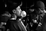 Wilmette traveler league's Michael Graham looks out from the dugout while blowing a bubble with Big League Chew at Roemer Park in Wilmette on Wednesday July 7, 2010.<br /> <br /> (William DeShazer/ Chicago Tribune) B58556283Z.1<br /> ....OUTSIDE TRIBUNE CO.- NO MAGS,  NO SALES, NO INTERNET, NO TV, NEW YORK TIMES OUT, CHICAGO OUT, NO DIGITAL MANIPULATION...