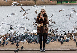 © Licensed to London News Pictures. 26/12/2020. London, UK. A walker poses with some of the birds next to the Serpentine in Hyde Park, London. As Oxford Street remained virtually empty on one of the busiest shopping days of the year, Hyde Park in Westminster draws large crowds enjoying a Boxing Day walk despite the cold and wind as Storm Bella heads for the UK. The Met Office has issued weather warnings for high winds and rain from tonight for much of England and Wales with disruption to transport and utilities. Also in the news, Downing Street orders many more areas of England to go into Tier 4 lockdown from today with tougher new Covid-19 restrictions for many as the mutated strains continue to spread throughout the South East. Photo credit: Alex Lentati/LNP