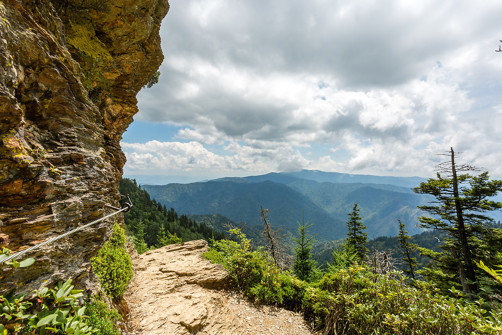 Great Smoky Mountains vista from a bend in the Mount LeConte trail. Photo taken July 29, 2018.