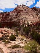 Southern Utah, Zion National Park