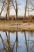 Nederland, Ooij, 24-2-2019 De bizonbaai is een voormalig zandwingat, recreatieplas, waterplas, meertje, baai, langs de rivier de Waal. Onderdeel van staatsbosbeheer. Vanwege het mooie weer op deze dag trekken veel mensen, dagjesmensen, fietsers, er op uit om te genieten van het mooie weer . Op de zomerdijk staan grote hoge bomen. De bisonbaai is onderdeel van de wandelroute, pelgrimsroute, walk of wisdom door het rijk van Nijmegen. Staand beeld .Foto: Flip Franssen