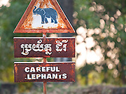 """""""Careful Elephants"""" road signs in Angkor, Siem Reap Province, Cambodia"""
