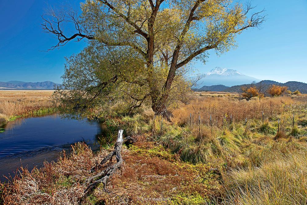 Shasta River Flows Through Ranch Land