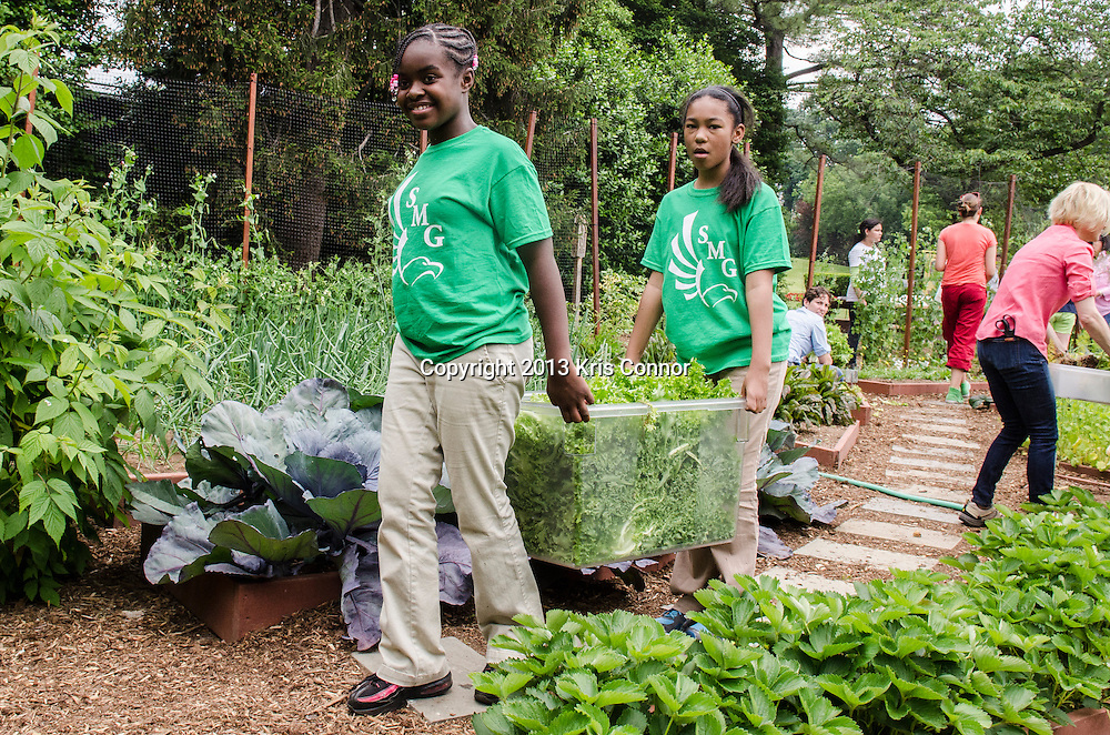 (L-R) Eliza Croom, and Kyla Bourne  of Sarah Moore Greene Magnet Technology Academy School, Knox County, TN carry vegetables during an event where they and the First Lady Michelle Obama harvested the White House Kitchen Garden for the fifth year in a row at the White House on May 28, 2013 in Washington DC. Photo by Kris Connor