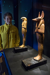 """© Licensed to London News Pictures. 01/11/2019. LONDON, UK. A staff member views (L to R) """"Gilded Wooden Statue of Herwer (Horus the Elder)"""" and """"Gilded Wooden Jackal-Headed Figure of Duahmutef on Base"""".  Preview of """"Tutankhamun, Treasures of the Golden Pharoah"""" at the Saatchi Gallery in Chelsea.  The exhibition celebrates the 100th year anniversary of the opening of Tutankhamun's tomb and displays 150 works in the largest collection of Tutankhamun's treasures ever to leave Egypt.  The show runs 2 November to 3 May 2020.  Photo credit: Stephen Chung/LNP"""