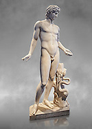 Roman statue of Apollo. known as the Chigi Apollo,  mid 2nd cent. AD from the Imperial Villa, Rome. As suggested by the quiver strap slung across the body, the god held a bow and arrow , in a pose of absorbed meditation. Wrapped around the tree trunk which acts as a support are gods attributes: the laurel and the snake. This classical statue is a reworking of an original Greek statue of the 4th cent. BC.  Inv 75675, The National Roman Museum, Rome, ItalyThe National Roman Museum, Rome, Italy .<br /> <br /> If you prefer to buy from our ALAMY PHOTO LIBRARY  Collection visit : https://www.alamy.com/portfolio/paul-williams-funkystock/roman-museum-rome-sculpture.html<br /> <br /> Visit our ROMAN ART & HISTORIC SITES PHOTO COLLECTIONS for more photos to download or buy as wall art prints https://funkystock.photoshelter.com/gallery-collection/The-Romans-Art-Artefacts-Antiquities-Historic-Sites-Pictures-Images/C0000r2uLJJo9_s0