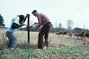 Cedo, a chimp that was taught by his owner to do chores at his farm in Bogue Chitto, Mississippi repairing a fence with his owner, Linser, Brister.