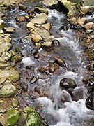Cave Creek flows through cobbles, Springbrook National Park, Queensland, Australia.