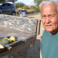Nathan Tohtsoni/Independent<br /> Wilder Smallcanyon, 80, is no longer proud of the produce he and his wife Marie plant on their farm in the agricultural rich community of Nenahnezad. He says the ground is contaminated every since the Gold King Mine spill in August 2015.