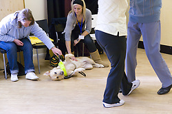 Two women petting a guide dog during an NRSB dance activity day at their centre on Ortzen Street,  This is part of the IMPACT project; an interactive road show delivering a series of events designed to give the visionimpaired community of Nottinghamshire the opportunity to IMPACT on the future of Notts Royal Society for the Blind,
