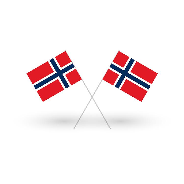 Illustrasjons med to norske flagg i kryss, med skygge, mot hvit bakgrunn.