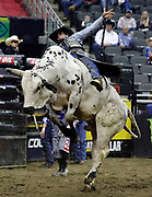 Junio Quaresima of Brazil rides Trail of Tears during a Professional Bull Riders competition at the Sprint Center, in Kansas City, Mo., Sunday, March 24, 2019. (AP Photo/Colin E. Braley)
