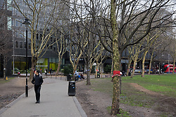 London, UK. 13th January, 2018. A member of the public coming from Euston Station passes by trees in Euston Square Gardens wrapped with hand-knitted scarves. Activists opposed to the HS2 high-speed rail link have 'yarn-bombed' many of the mature London Plane, Red Oak, Common Whitebeam, Common Lime and Wild Service trees in Euston Square Gardens expected to be felled to make way for temporary sites for construction vehicles and a displaced taxi rank as part of preparations for the controversial HS2 project in order to draw attention to their fate.