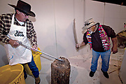 Jaycee volunteer snake handlers chop the heads off a western diamondback rattler during the 51st Annual Sweetwater Texas Rattlesnake Round-Up March 13, 2009 in Sweetwater, Texas. During the three-day event approximately 240,000 pounds of rattlesnake will be collected, milked and served to support charity.