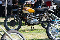 BF11 Invited builder Hayden Roberts 1965 Triumph at the Invited Builders corral at the end of the day at the Born Free Motorcycle Show (BF11) at Oak Canyon Ranch, Silverado  CA, USA. Saturday, June 22, 2019. Photography ©2019 Michael Lichter.