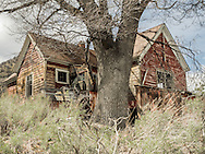 It's hard for me to look at this abandoned house and not try to imagine what it was like here when children were running around under a much smaller oak tree.