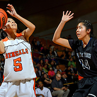 011614  Adron Gardner/Independent<br /> <br /> Gallup Bengal Danisha Torrez (5), left, shoots ahead of  Piedra Vista Panther Claudia Bradley Charles (14) in Gallup Wednesday.
