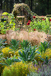 Kale 'Cavalo Nero' with mixed tagetes in the potager at De Boschhoeve