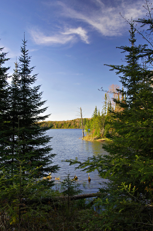 Shoreline of Helen Lake at Sylvania Wilderness Area of Ottawa National Forest near Watersmeet Michigan.