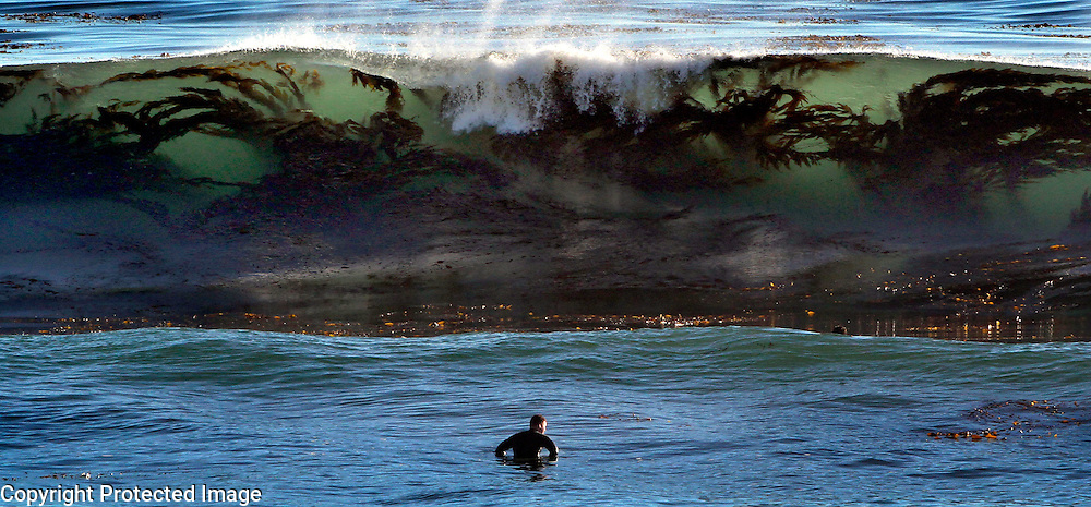 A kelp-filled wave zeroes in on a surfer in the lineup off of 34th Avenue.<br /> Photo by Shmuel Thaler <br /> shmuel_thaler@yahoo.com www.shmuelthaler.com