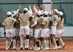 JAKARTA, Aug. 24, 2018  Players of Japan celebrate after women's Team Grand Final of softball at the 18th Asian Games in Jakarta, Indonesia on Aug. 24, 2018. Japan won the gold medal by 7-0. (Credit Image: © Ding Ting/Xinhua via ZUMA Wire)