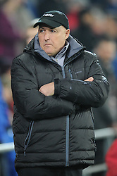 Cardiff City Manager, Russell Slade - Photo mandatory by-line: Dougie Allward/JMP - Mobile: 07966 386802 - 21/11/2014 - Sport - Football - Cardiff - Cardiff City Stadium - Cardiff City v Reading - Sky Bet Championship