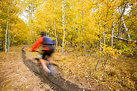 Young man mountain biking during fall near Fallen Leaf Lake, CA.