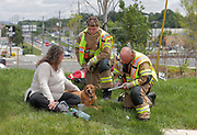 A woman and her dog is assisted by firefighters on the scene of a 4-car accident blocking the southbound lane at Rio Road and U.S. 29 Monday afternoon in Albemarle County, Va. Photo/Andrew Shurtleff/The Daily Progress