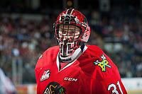 KELOWNA, CANADA - MAY 1: Adin Hill #31 of Portland Winterhawks stands on the ice against the Kelowna Rockets on May 1, 2015 at Prospera Place in Kelowna, British Columbia, Canada.  (Photo by Marissa Baecker/Getty Images)  *** Local Caption *** Adin Hill;