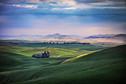 Image of wheatfields in the Palouse, Steptoe, Washington, Pacific Northwest by Randy Wells