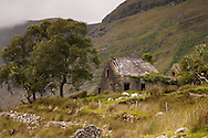 Old cottage near the Kerry Way in Black Valley and McGillycuddy Reeks, County Kerry, Ireland