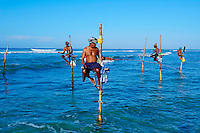Sri Lanka, province du sud, plage de Weligama, pêcheurs sur échasses // Sri Lanka, Southern Province, South Coast beach, Weligama beach, Stilt fishermen on the coast