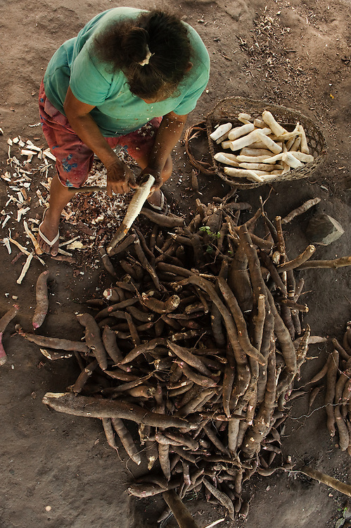 Cassava Being Peeled.<br /> Fairview Village<br /> Rupununi<br /> GUYANA<br /> South America