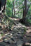 old  mountain walking trail Japan