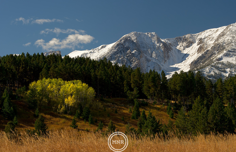Autumn Meets the first signs of winter in the Bridger Mountains, Montana.