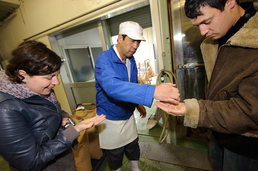 A worker at Mito Tengu Natto shows soy beans to Jess and Anthony, Mito, Ibaragi Pref, Japan, April 17, 2010.