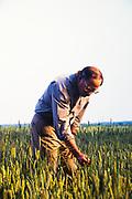 U.S. Senator Sam Nunn - a Democrat from Georgia - on his tree farm in Perry, Georgia.