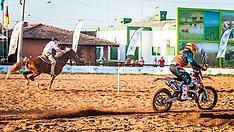 Cavalo VS Moto