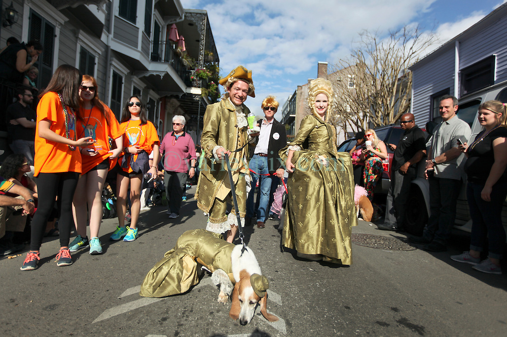 31 January 2016. New Orleans, Louisiana.<br /> Mardi Gras Dog Parade. Jenna and Ryan McMullen with dog Caddo (in dress) and Abigail. The Mystic Krewe of Barkus winds its way around the French Quarter with dogs and their owners dressed up for this year's theme, 'From the Doghouse to the Whitehouse.' <br /> Photo©; Charlie Varley/varleypix.com