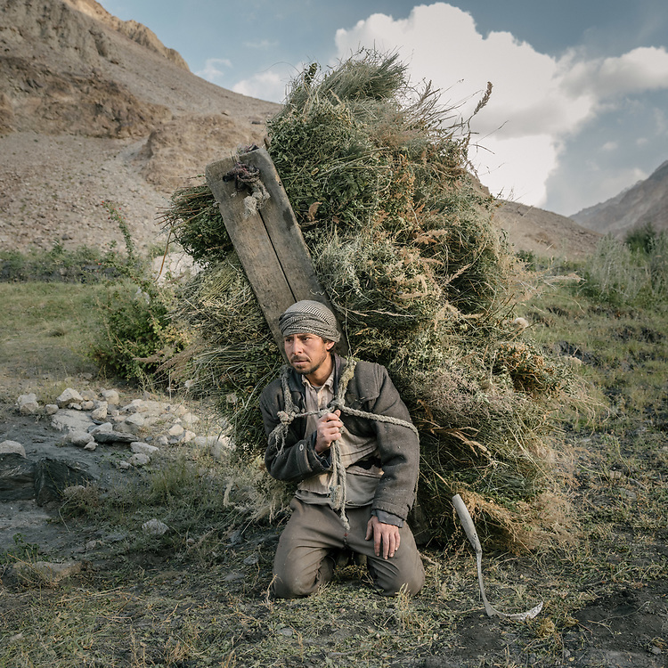A man carrying hay. <br /> The traditional life of the Wakhi people, in the Wakhan corridor, amongst the Pamir mountains.