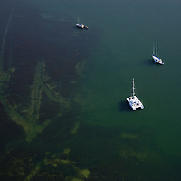 Anchorage area in Miami's Biscayne Bay.  Shallow area adjacent to channel is visible where boaters have run aground.