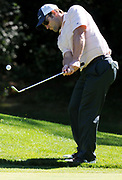 """MASHPEE -- 092110 --  New England Patriots wide receiver Wes Welker takes a shot during the """"Boston Stars for One Family"""" charity golf event at Willowbend Country Club.<br /> <br /> 092110ch06   Cape Cod Times/Christine Hochkeppel"""