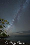 the Milky Way rises above Anaeho'omalu Bay, Waikoloa Resort Area, South Kohala, Hawaii Island ( the Big Island ), Hawaii, U.S.A. ( Central Pacific Ocean ); several shooting stars are visible