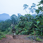 Rick Stanley hikes the trail that leads to the Summit of Gunung Bondang Mountain, Gunung Bondang Expedition, Central Kalimantan, Borneo, Indonesia. Run by the Heart of Borneo Rainforest Foundation.