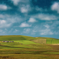 Landscape in Orkney with green fields and farm and a blue sky