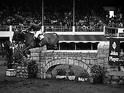 07/08/1980<br /> 08/07/1980<br /> 07 August 1980<br /> R.D.S. Horse Show: John Player International, Ballsbridge, Dublin.  Malcolm Pyrah (Great Britain) on Towerlands Anglezarke.