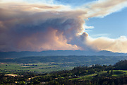 Smoke from the Skaggs Fire rises above Alexander Valley in the Sonoma Wine Country after a lightning storm pummeled Northern California starting hundreds of wildfires across the region.